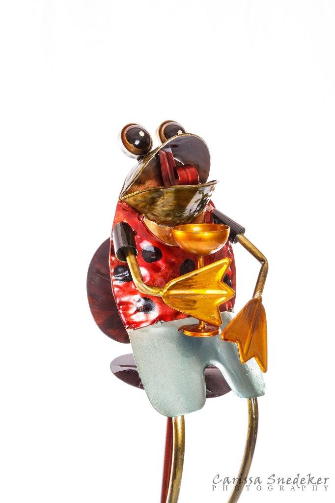Frog-Sculpture_02-01-2014_01