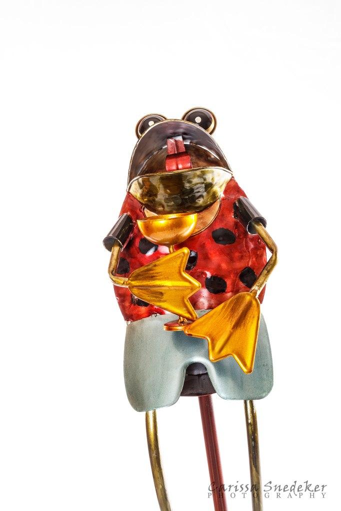 Frog-Sculpture_02-01-2014_02