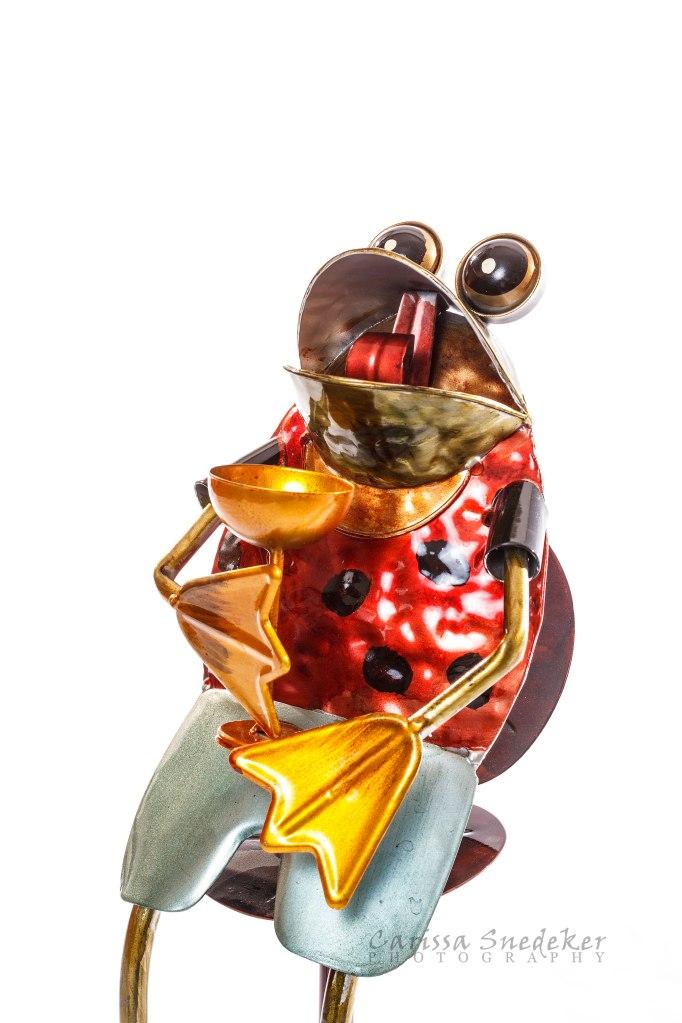 Frog-Sculpture_02-01-2014_03