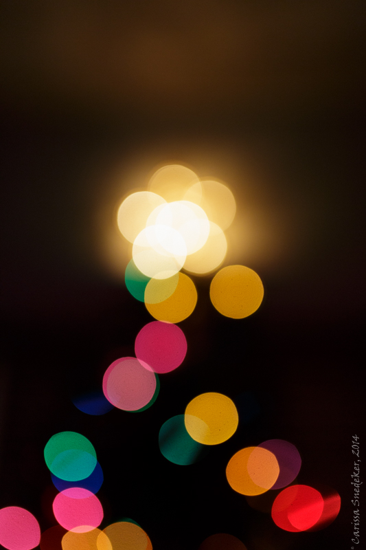 Tree Lights 12-14-2014-3