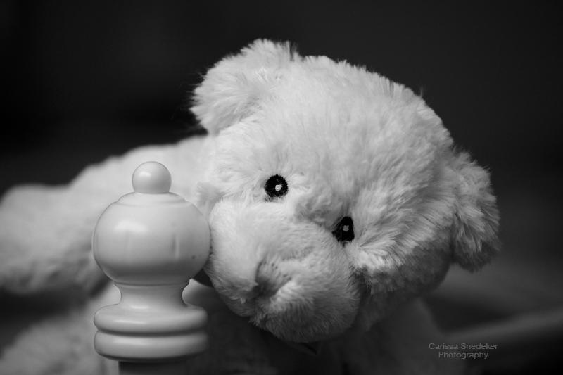 BW-Bear