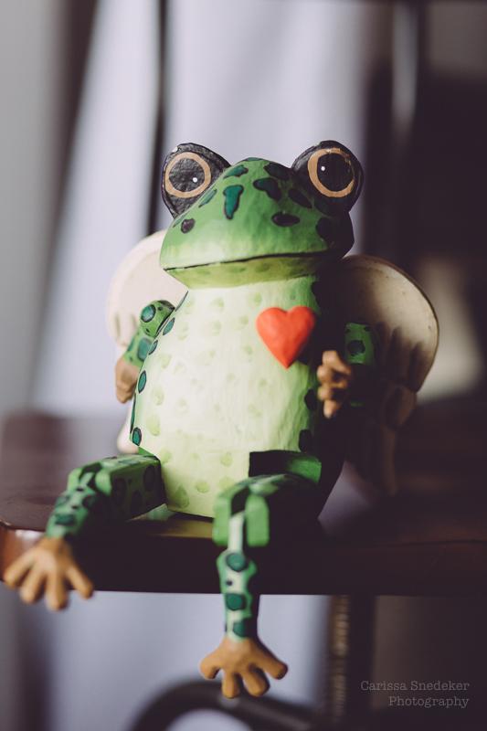 FroggyWP-1