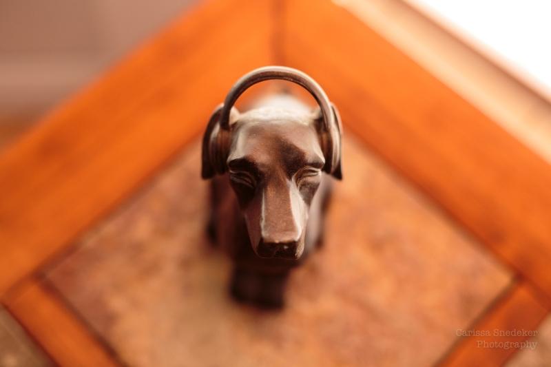 DogWithHeadphones